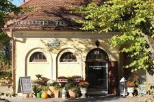 Auktionshaus Franke - Antiquitäten | Kunst | Design