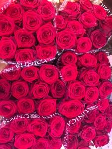 Blumen Baruch