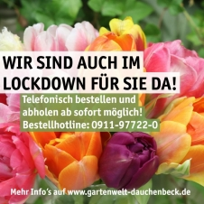 Gartenwelt Dauchenbeck